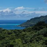 Moorea's Opunohu Bay from the Belvedere Overlook