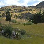 The hills near Frankton, New Zealand