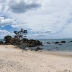 A panorama image of the beach at Kauotunu, New Zealand